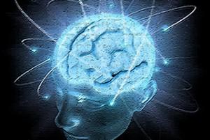 Coaching und Beratung informiert: Wie Schmerz ins Gehirn gelangt