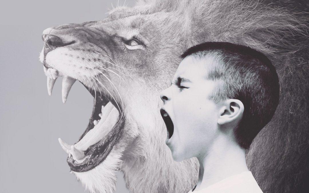 Mein Kind wird oft wütend, was kann ich tun? Entwicklung von Emotionsregulation bei Wut und Aggression – Kinder und Jugendliche in Koblenz